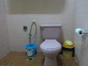 7. Rosa toalett