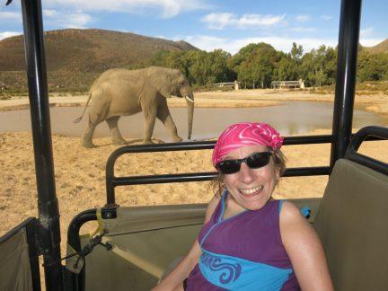 60. Gry og elefanten