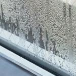 窓枠のカビを除去するには?予防と結露対策の紹介!