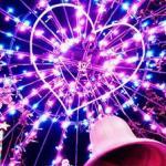 2018足利フラワーパークイルミネーション日程、割引券、感想は?