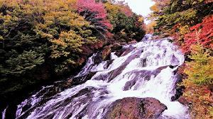 日光竜頭の滝紅葉2