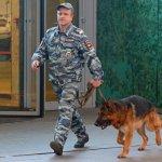 В Москве эвакуировали восемь школ из-за звонков о бомбах