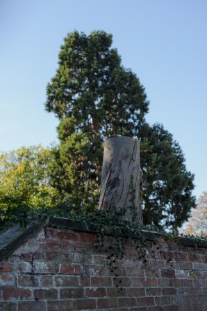 Eucalyptus, Aston on Trent