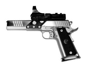 Race_Gun_Custom