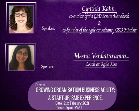 Organizational and Business Agility