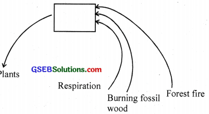 GSEB Solutions Class 12 Biology Chapter 16 Environmental Issues 2