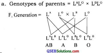 GSEB Solutions Class 12 Biology Chapter 5 Principles of Inheritance and Variation 12