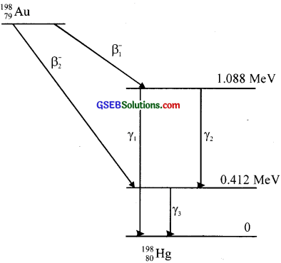 GSEB Solutions Class 12 Physics Chapter 13 Nuclei image - 19