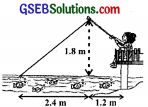 GSEB Solutions Class 10 Maths Chapter 6 Triangles Ex 6.6 img-10