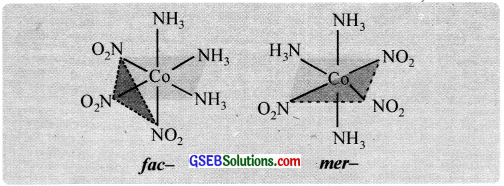 GSEB Solutions Class 12 Chemistry Chapter 9 Coordination Compounds img 19