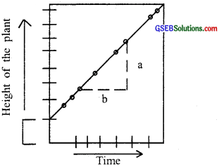 GSEB Solutions Class 11 Biology Chapter 15 Plant Growth and Development img 1