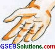 GSEB Solutions Class 8 Hindi Chapter 9 ममता 6