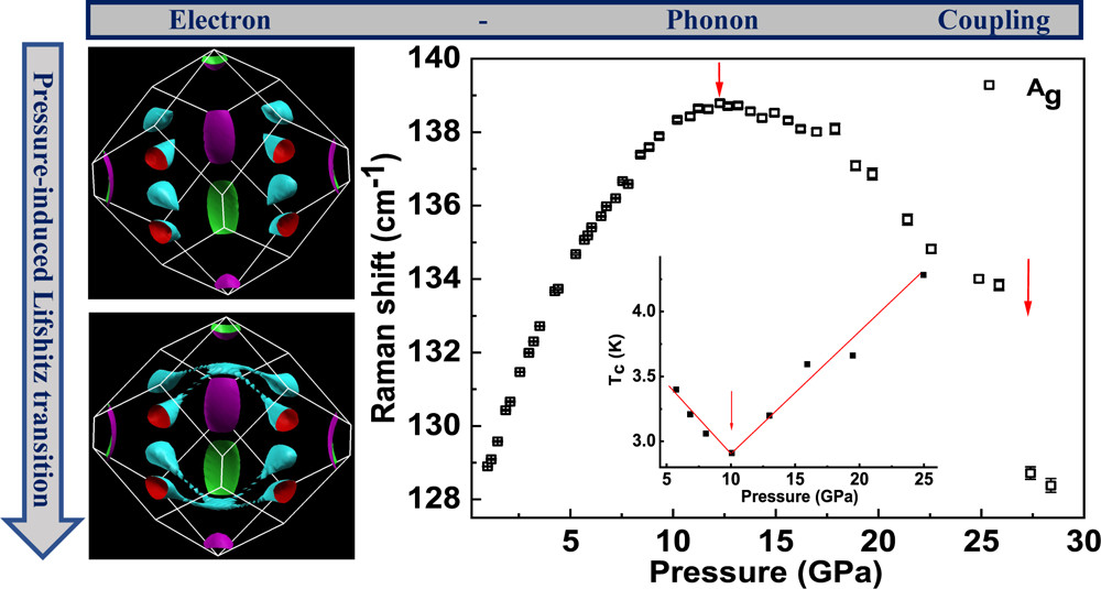 Structural, Vibrational, and Electronic Properties of 1D-TlInTe2 under High Pressure: A Combined Experimental and Theoretical Study