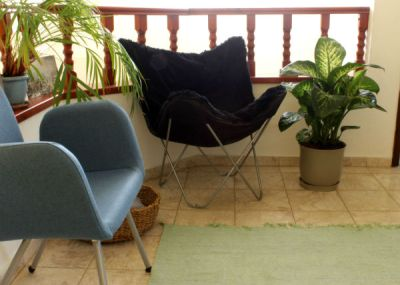 Blue and black chairs, big size plants