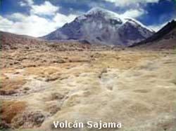 Volcán Sajama