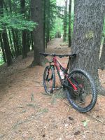 MTB Wood and Trail Riding
