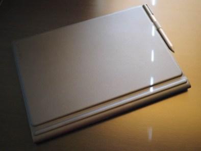 P8020083