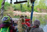 2017-05-04 Zoo Hannover 033-be-kl