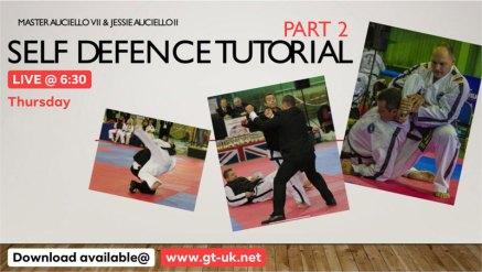 GTUK-Self-Defence-Pattern-Tutorial-2