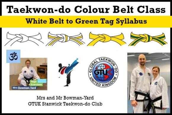 Taekwon-do-Colour-Belt-Classes-WtoGT