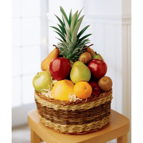 Recovery - Fruit Basket
