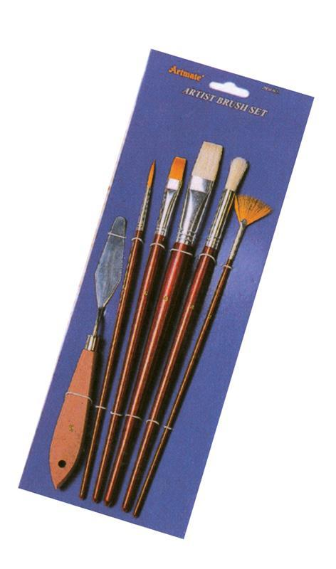 pensule set 6 buc