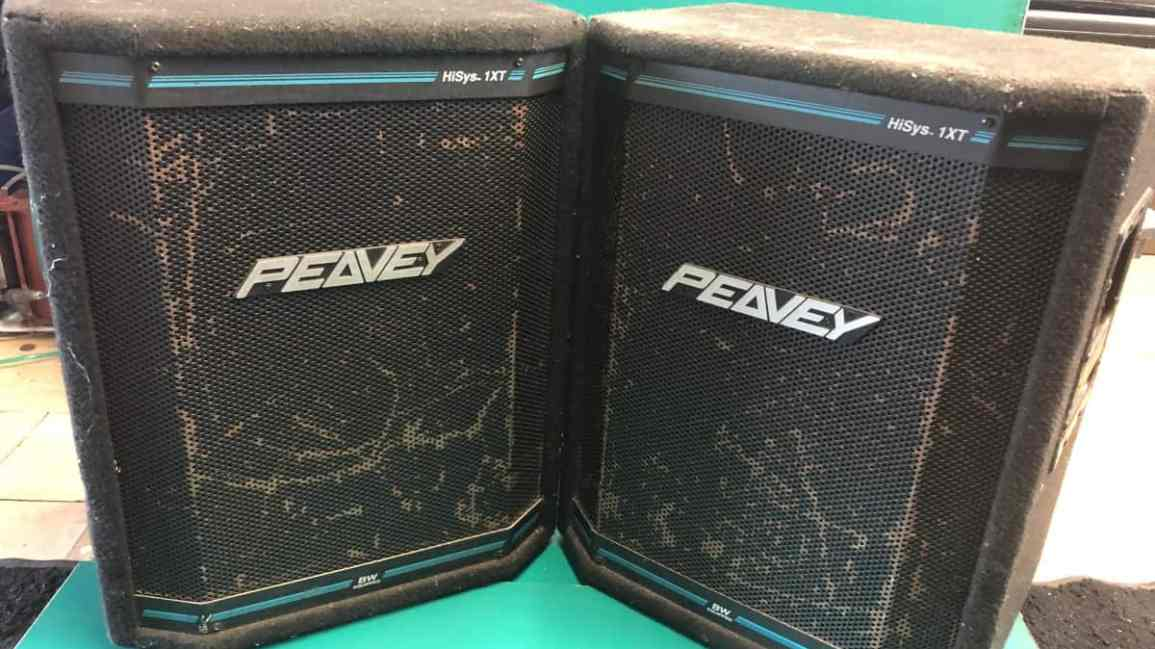 Peavey Hysis 1XT Speakers