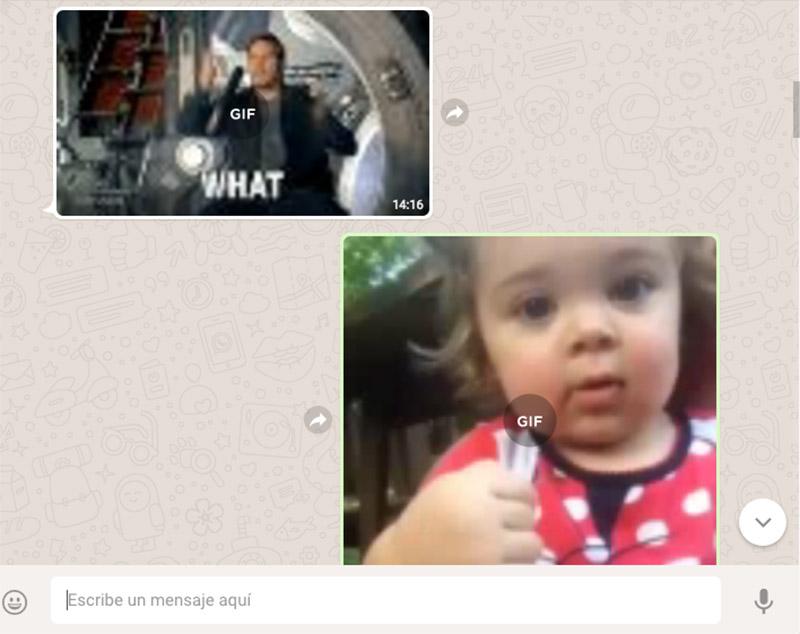 WhatsApp agrega buscador de GIFs para incluir en el chat