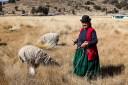 Mujer en un campo en los andes