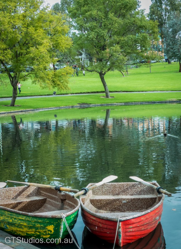 The trees reflect in the lake at Rymill Park