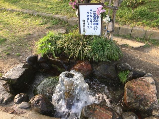 下江津湖 湧水