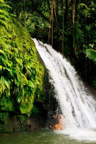 Cascade aux Ecrevisses les îles de Guadeloupe
