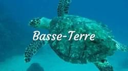 Activités Basse-Terre les îles de Guadeloupe