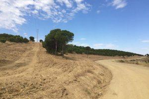 Gabinete Técnico Florestal de Mértola