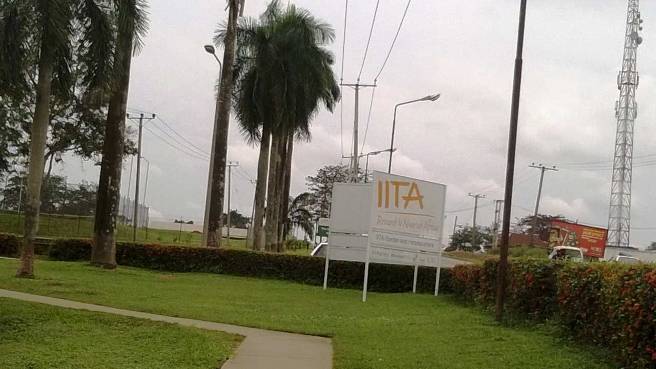 IITA - IITA, Seed Council inaugurate seed trackers for smart farming in Nigeria