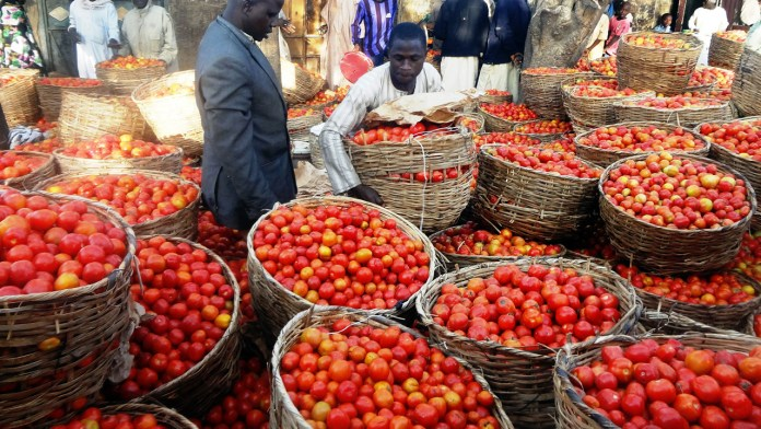 New methods to tackle Nigeria's food insecurity 2