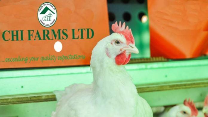 Aviagen, CHI Farms list secrets of breeding, chicken production 1