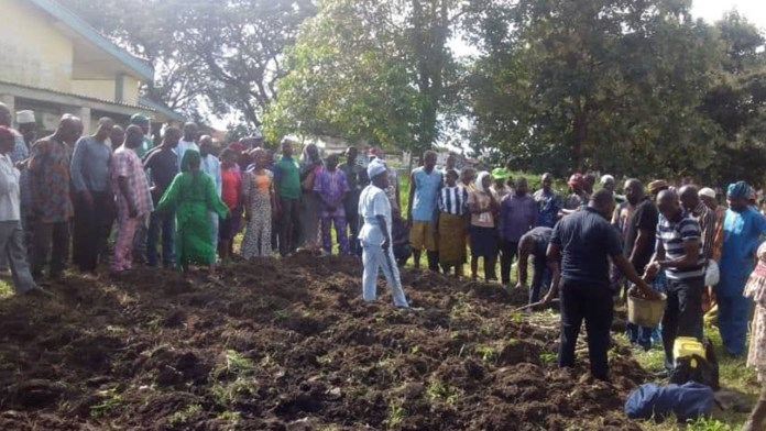 Expert asks farmers to vote agric-friendly politicians 1