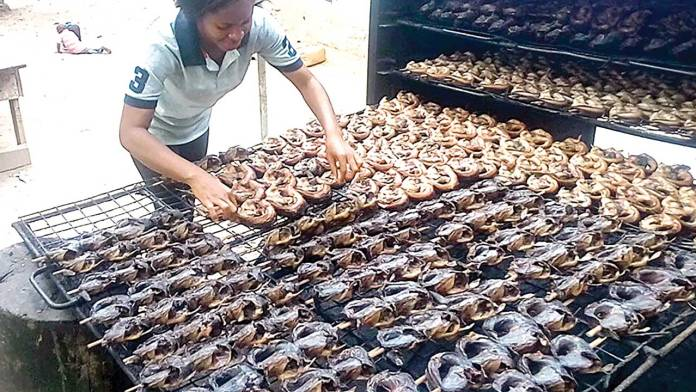 Why US may not lift ban on processed fish, others soon | 1
