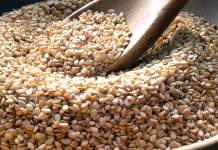 Sesame Seed Can Generate Over $1bn Annually For Nigeria Association