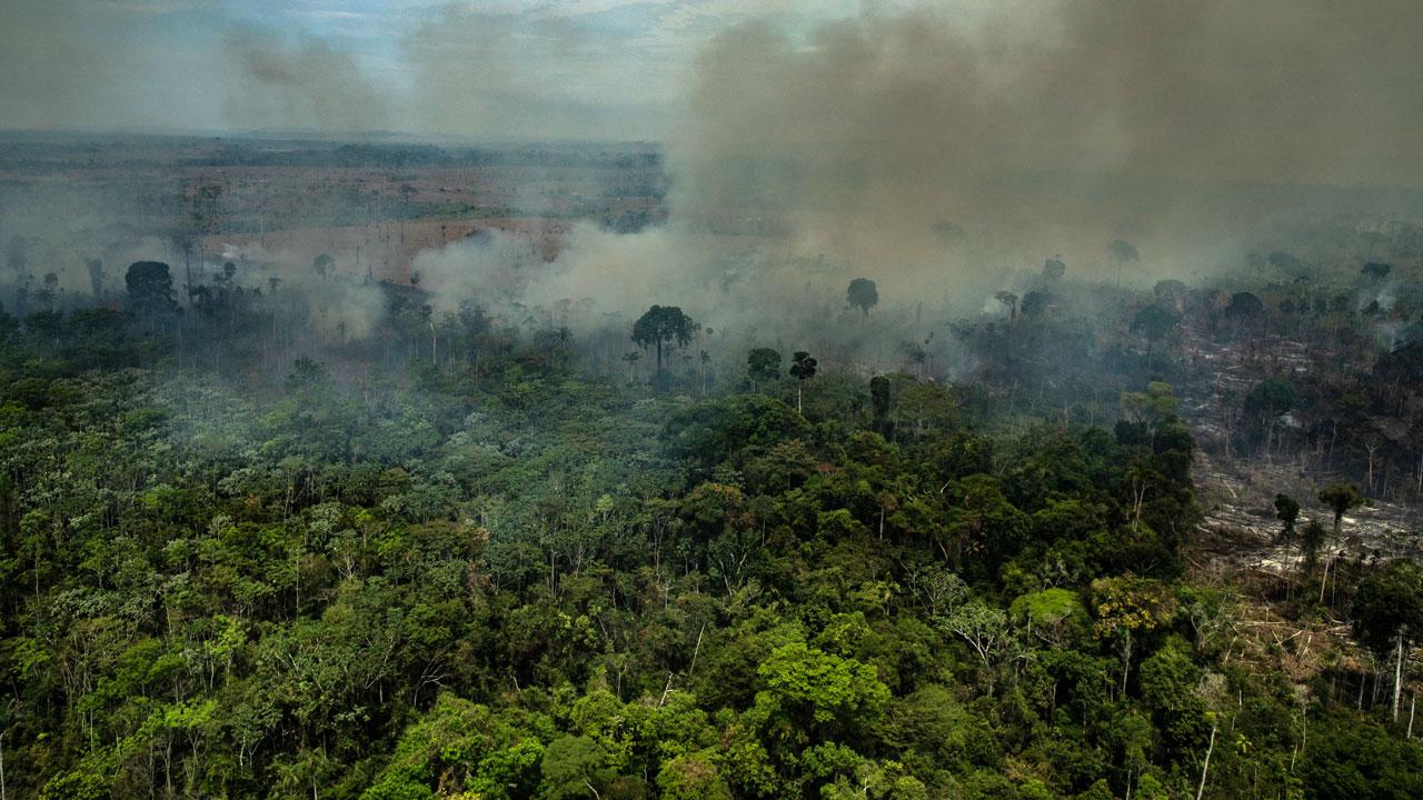 NNN: शनिवार को जारी आधिकारिक आंकड़ों के अनुसार, प्रतिबंध के बावजूद, ब्राजील के अमेज़ॅन क्षेत्र में आग की संख्या में वृद्धि जारी है। अमेज़ॅन बेसिन की सीमा वाले नौ ब्राजील के राज्यों में, पिछले साल के इसी महीने की तुलना में जुलाई में आग लगने की संख्या में 20 प्रतिशत से अधिक की वृद्धि हुई, […]