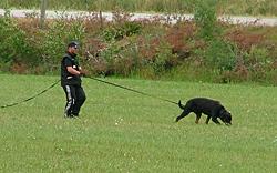 Advanced Schutzhund Pdf