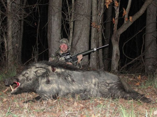 Boar Beyond Belief Equals a Lot of Sausage [Video]