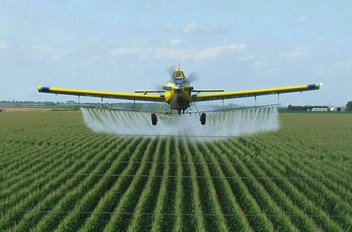 Autism Linked to Pesticides