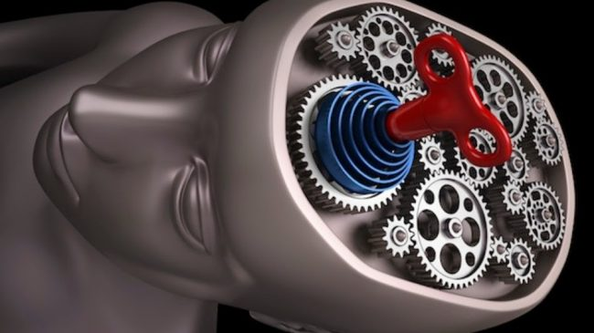 Scientists Discover How to Switch Consciousness Off and On
