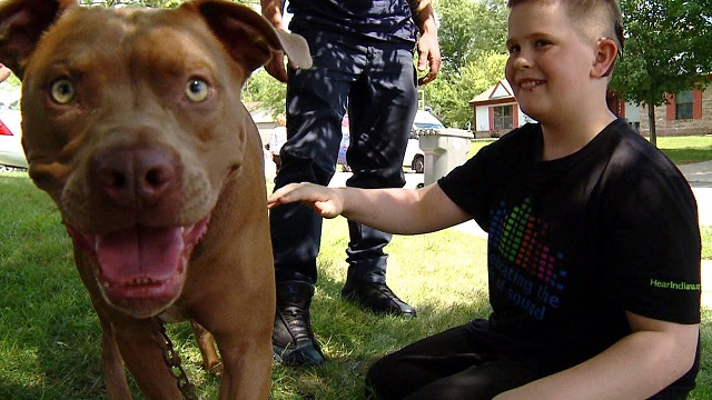 Pit Bull Saved Deaf Teen From Deadly Fire