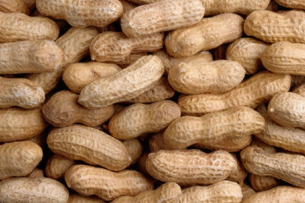 Food Safety: Peanuts Shipped With False Safety Documents