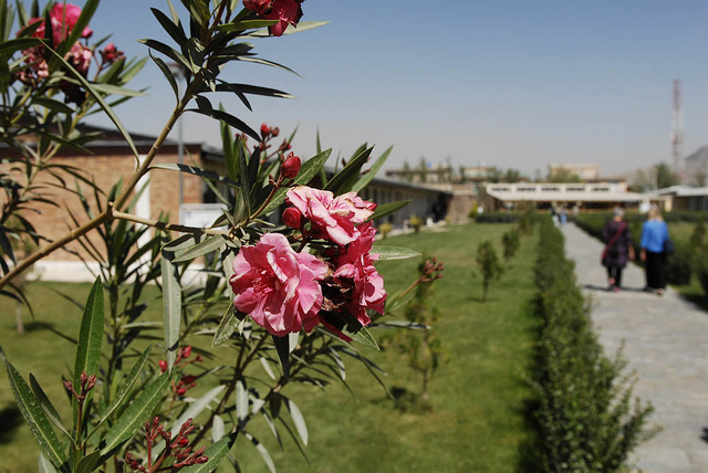 Hostage Situation Continues in Afghanistan
