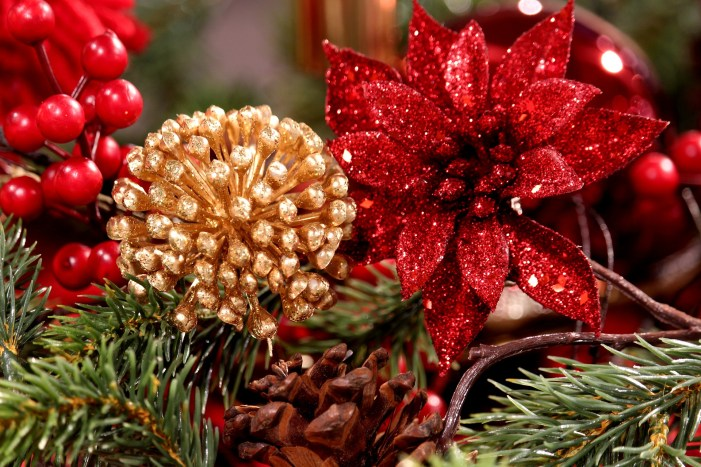 Christmas Celebrations Could Be Similar to Thanksgiving Day Festivities