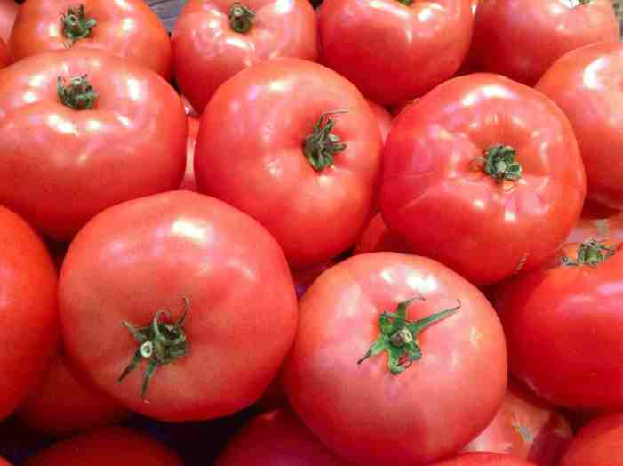 SoulFood Hydroponics Greenhouse Grows Tomatoes for Food Pantries